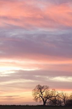 Soft pastel tones in the countryside sky and the first light of night turns to day.  Fine art photography prints, decorative canvas prints, acrylic prints, metal Prints wall art  for sale on FineArtAmerica.com. Prints starting at $25. Copyright: James Bo Insogna