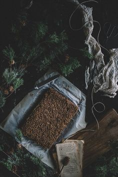 Vegan Sorghum Breakfast Bars | TermiNatetor Kitchen | A Midwest-based food and photography blog