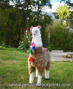 Stuffy alpaca big 47 brown and white Alpaca Fur Stuffed | Etsy Alpaca Blanket, Baby Alpaca, Alpaca Wool, Big Stuffed Animal, Alpaca Stuffed Animal, Presents For Him, Small Dogs, Fur Babies, Diy And Crafts