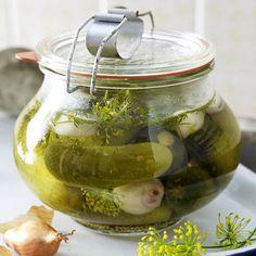 1000 images about gurken on pinterest rezepte kochen and cucumber plant. Black Bedroom Furniture Sets. Home Design Ideas