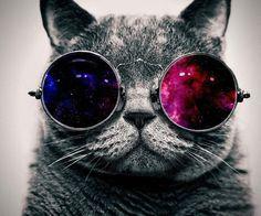 Galaxy Cat☻