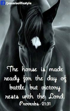 This scripture for the horse barn. Favorite Bible Verses, Bible Verses Quotes, Bible Scriptures, Inspirational Horse Quotes, Horse Riding Quotes, Country Girl Quotes, Words To Describe, Religious Quotes, Word Of God