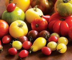 Recipes and ideas for preserving ripe summer tomatoes