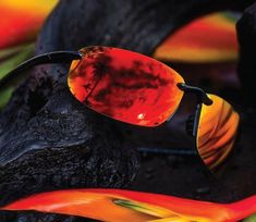 Maui Jim Launches New Sunglasses For Spring 2021 Maui Jim Sunglasses, Men's Sunglasses, Blue Hawaii, Pad Design, Classic Collection, Product Launch, Journal, Spring