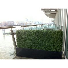 Artificial Boxwood Hedges are made by hand to any shape or size in the UK, Installation Service also available