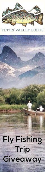 Making an Effective Downstream Drift Fly Fishing Tips, Trout, Travel, Viajes, Brown Trout, Destinations, Traveling, Trips
