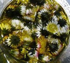 Create your own daisy oil in one day, which is great for skin care Aroma oliën Natural Skin Care, Natural Health, Diy Soap And Shampoo, Deep Conditioner For Natural Hair, Make Beauty, Natural Cosmetics, Homemade Beauty, Fruits And Veggies, Natural Remedies