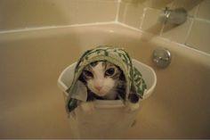 I wanted to take a bath