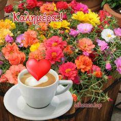 Εικόνες Τοπ:Όλη η ομορφιά χρωμάτων σε μια καλημέρα.! - eikones top Good Morning Good Night, Fruit, Tableware, Dinnerware, Tablewares, Dishes, Place Settings