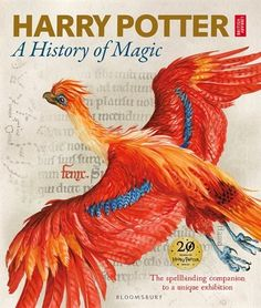 Harry Potter - A History Of Magic: The Book Of The Exhibition, Book by British Library (Hardcover) | chapters.indigo.ca