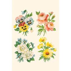 Buyenlarge 'Four Flower Collections' Graphic Art