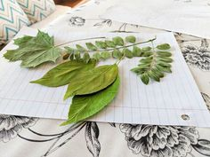 DIY Pressed Leaf Art - DIY Dollar store frames are the perfect item to craft from. You can create beautiful seasonal artwork that is easy to change out. Create beautiful diy fall art with the beautiful folliage. Diy Canvas Art, Diy Wall Art, Dollar Store Crafts, Dollar Stores, Diy Spray Paint, Pressed Leaves, Diy Planter Box, Autumn Art, Boho Diy