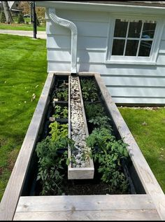 Rain Garden, Dream Garden, Lawn And Garden, Garden Beds, Vegetable Garden, Home And Garden, Garden Yard Ideas, Garden Projects, Outdoor Projects