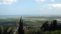 Zichron Yaakov- Israel's Wine Pioneer