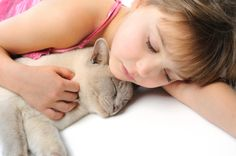 How Cats Show Affection | A Feline Perspective