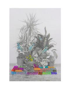My Little Garden. 2012  ( DIN A-4 )    Azucena gonzález