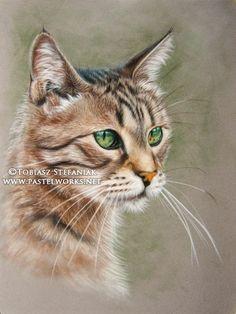 pastel cat portrait
