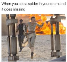 When you see a spider in your room and it goes missing