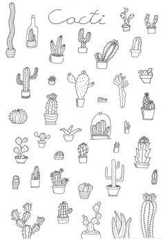 cacti bullet journal doodle ideas