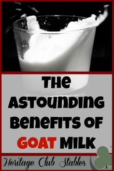 The Benefits of Goat Milk are Astounding. Truly. These 10 reasons are why you should look into drinking goat milk. Your body will thank you!