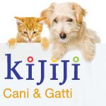 Kijiji contro abbandono animali