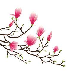 magnolia blossom Pixerstick Sticker -