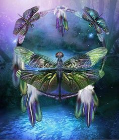 Shop for dragonfly dream catcher artwork and designs from the world's greatest living artists. All dragonfly dream catcher artwork ships within 48 hours and includes a money-back guarantee. Dragonfly Art, Dragonfly Tattoo, Dragonfly Quotes, Dragonfly Wallpaper, Dragonfly Meaning, Dragonfly Clothing, Dragonfly Painting, Animal Spirit Guides, Spirit Animal