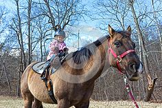 Download Learning To Ride A Horse Stock Photo for free or as low as $0.20USD. New users enjoy 60% OFF. 22,840,579 high-resolution stock photos and vector illustrations. Image: 39041600