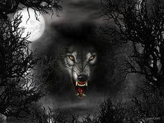 wolf fanasty | Wolf - werewolf, abstract, fantasy, creatures, wolf, moonlight, night ...