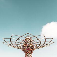 """""""El árbol de la vida  #minimalism #minimalist #awesomeminimal #minimal_lookup #minimalzine #archiminimal #arkiminimal #rsa_minimal #minimal_experience…"""""""