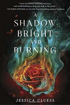 A Shadow Bright and Burning (Kingdom on Fire, Book One) b... https://smile.amazon.com/dp/0553535900/ref=cm_sw_r_pi_dp_x_uyMYxbA1Y7H3K