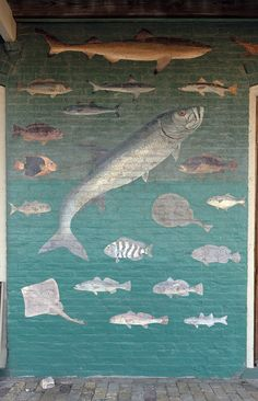 One section of an elaborate mural, representing various Gulf of Mexico fish species, painted in 1906 by a local (reputedly one-armed) fisherman on the facade of the Champion Building, Port Isabel, Texas. Formerly an 1899 dry-goods store owned by Charles Champion, the building now houses the Port Isabel Historical Museum. Photo 2014, the Lyda Hill Texas Collection of Photographs in Carol M. Highsmith's America Project, Library of Congress, Prints and Photographs Division.