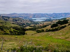 Hilltop Lookout, Akaroa - 43 Photos to Convince You to Visit New Zealand's South Island - The Trusted Traveller