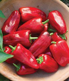 Pepper, Hot, Sweet Heat Hybrid: Red peppers boast 65% higher vitamin C than average peppers