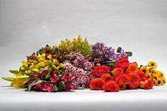 Everything you need to know about Valentine's Day flowers