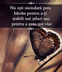 Ziua IV - Am invatat ... - Doar eu Osho, Spiritual Quotes, Wake Up, Spirituality, Inspiration, Instagram, Tie, Photos, Biblical Inspiration