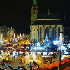 Noční Plzeň, night Pilsen, christmas Pilsen Times Square, Night, Christmas, Travel, Xmas, Viajes, Weihnachten, Traveling, Yule