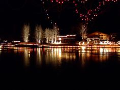 1000 Images About Home For The Holidays On Pinterest Holiday Lights Tree Lighting And