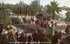 """Watching the Seals"" at West Lake (MacArthur) Park in 1910. (Bizarre Los Angeles)"