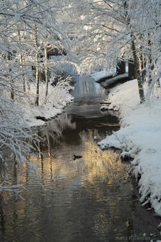 Most beautiful places in my town! Helsinki, Finland Travel, Winter Scenery, Snowy Day, Snow Scenes, Winter Beauty, Winter Landscape, Beautiful Landscapes, Winter Wonderland