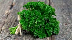 All About The #Parsley #Herb #gardeningwin #gardening #garden #herbs #seeds #seed
