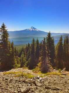 The best places to hike in Oregon- includes pictures, reviews, distances and tips!!! **MUST USE THIS SUMMER!!**