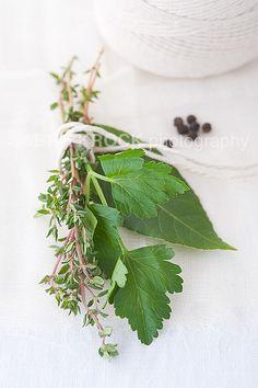 Bouquet Garni Spices And Herbs, Fresh Herbs, Fresco, Herb Bouquet, Farmers Market Recipes, Herb Bread, B Food, Eat Seasonal, Aromatic Herbs