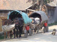 Travelling Gypsies