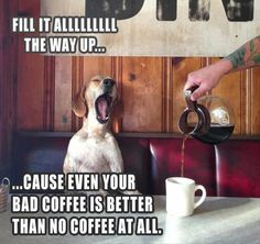 Need to wake up...make it extra strong...I am not a morning dog...never mind, I'll go take a nap.