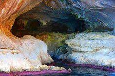 Capri -  hule