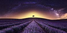 Alone by Javier de la Torre / 500px