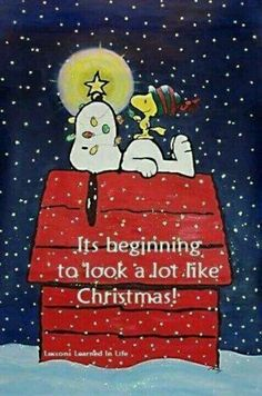 It's Beginning to Look a Lot Like Christmas - Snoopy and Woodstock on Top of Doghouse Christmas Quotes, Christmas Pictures, Christmas Art, Christmas Humor, Winter Christmas, Vintage Christmas, Xmas, Christmas Countdown, Snoopy Und Woodstock
