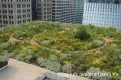 Telhados e paredes verdes - Casa - Planetazul – O Portal de Ambiente e Sustentabilidade