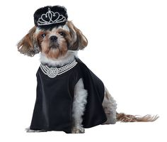 Barkfest at Sniffany's Pet Dog Costume Dress Wig Crown Princess Halloween XS-LG * See this awesome image  : Costumes for dog